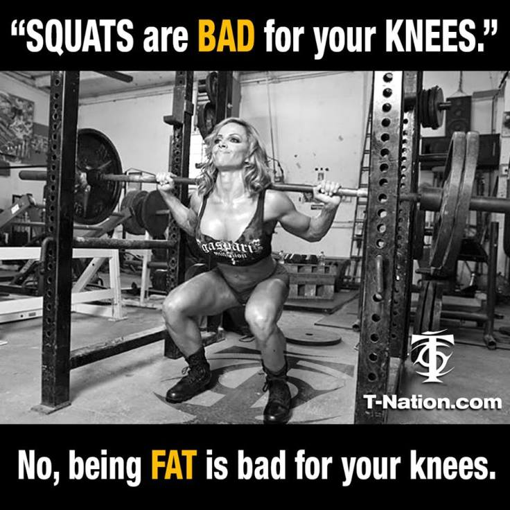 fat knees