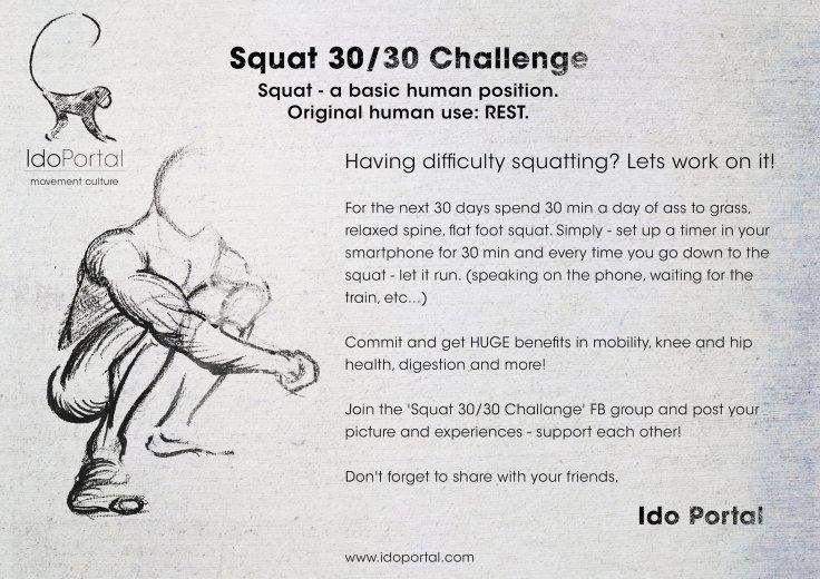 30-30-Squat-Challenge