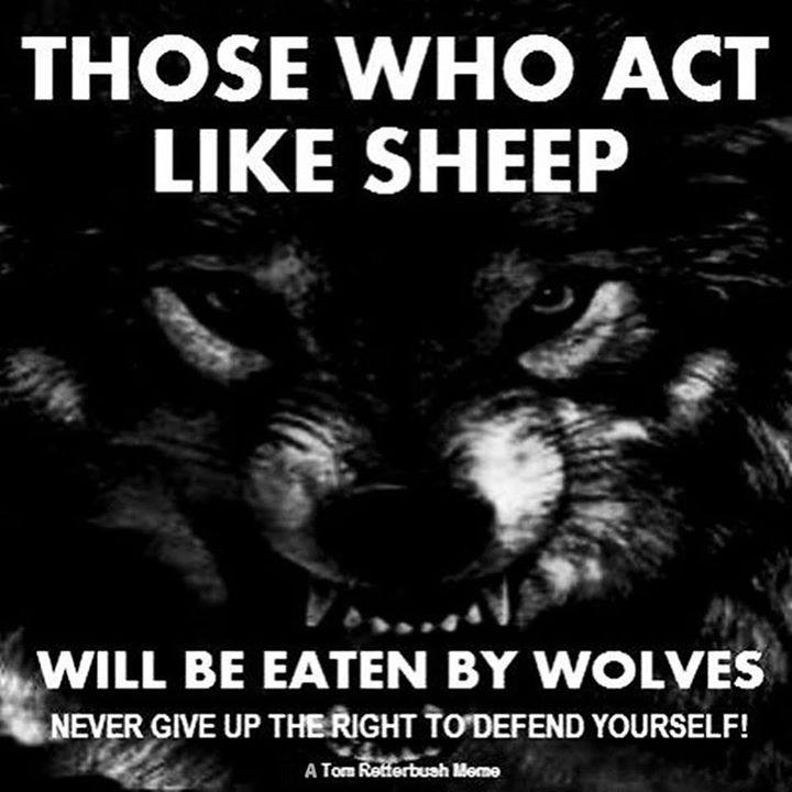 act like sheep